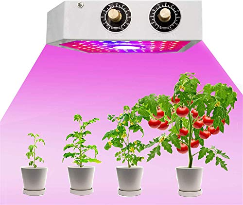 1200W COB LED Grow Light Full Spectrum Plant Growing Lamps with Veg and...