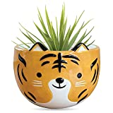 Carlton Lane Tiger Animal Planter – 5.9 x 5.9 x 5 Inches Tiger Plant Pot – Premium Ceramic Animal Planters for Indoor – Cute Hand Painted Design – Convenient Drain Hole with Included Plug
