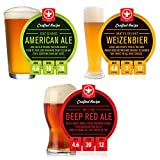 BrewDemon 2 Gal. Craft Variety 3-Pack of Beer Recipe Kits - Makes (3) Wicked-Good 4.6% ABV Batches of Craft Brewed Beer