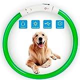 Collar de Perro con luz LED, Recargable por USB, Collar de Perro LED, Resistente al Agua, Luminoso, Collar de Perro y Longitud Ajustable con Tres Modos de iluminación para Perros y Gatos (Green)