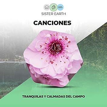 Canciones Tranquilas y Calmadas del Campo