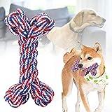 Fishawk Juguete de Limpieza de Dientes para Perros, Juguete para Perros, Juguete para Cachorros, Mascotas para Perros Perros Gatos