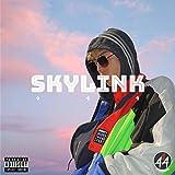 Skylink [Explicit]