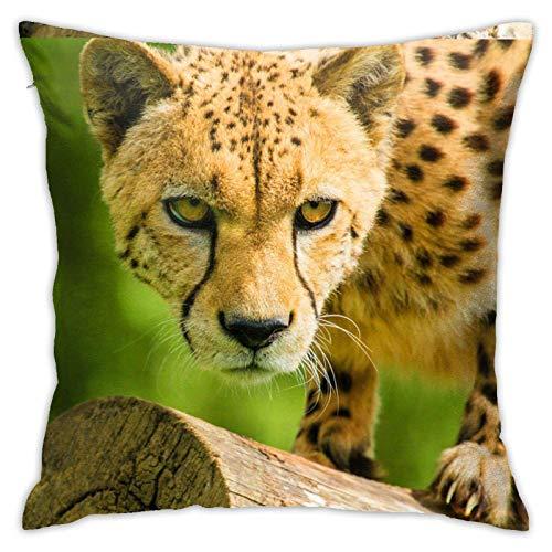 Fundas de almohada de leopardo salvaje 45,7 x 45,7 cm para casa, cama, sofá, coche, etc.