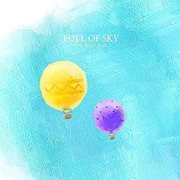 Full of sky