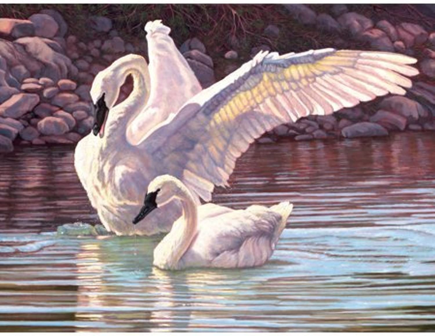 Gary Johnson Trumpeters Duet 500pc Jigsaw Puzzle by SunsOut