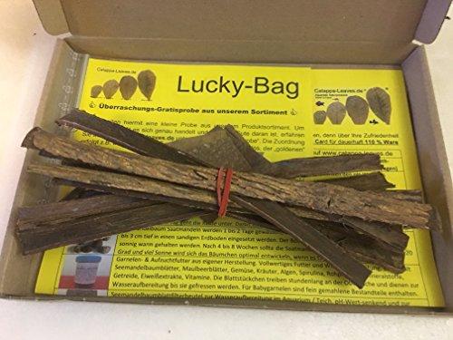Catappa Barks 10x20cm (50 Gramm) original A-Markenware von Catappa-Leaves - BLITZVERSAND - Catappa Bark Nano Rinde + Gratisprobe aus unserem Sortiment
