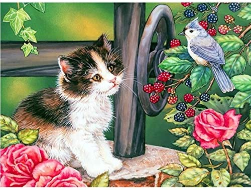 Diamond Painting Kits Cat Kingfisher 5D 24x48in 5% OFF 60x120cm supreme Large