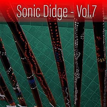 Sonic Didge, Vol. 7