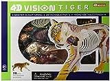Famemaster 4D Vision Tiger Anatomy Model by Fame Master