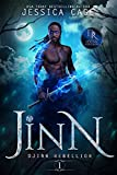 Jinn: An AA Post-Apocalyptic Fantasy (Djinn Rebellion Book 1) (English Edition)