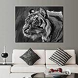zgwxp77 Pintura en Lienzo Impresiones en HD decoración del hogar Mural Cabeza de Tigre póster Sala de Estar Abstracto Imagen en Blanco y Negro hogar y jardín50cmx75cmx1pcs