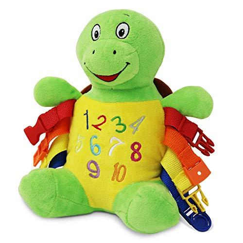 Buckle Toys - Bucky Turtle - Learning...