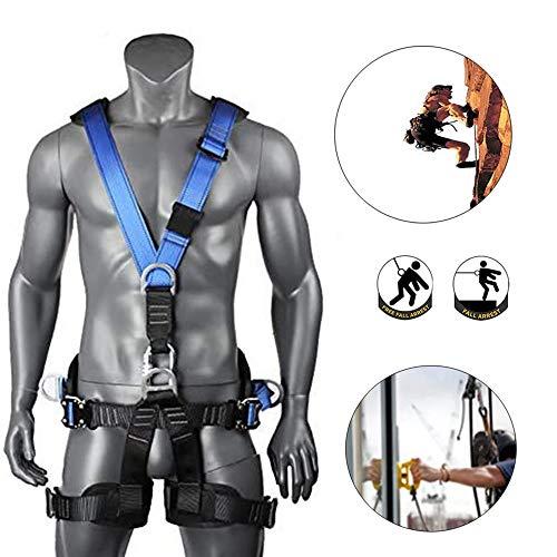 CHEIRS Fallschutzausrüstungen, Fallschutz-Set, Einfacher Auffanggurt Mir Rückenstütze, Für Outdoor Baumklettern Bergsteigen Rettungsdienst