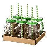 Set 6 Vasos Jarras Cactus Cristal con Pajita Tapa 420 ml Tropical - Juego Lote Aislado en Vidrio Jarritas para Mojito Margarita Coctel Zumo Refresco Smoothie Cubata para Fiesta Cumpleaños Coctel