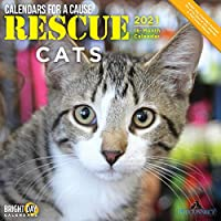 Rescue Cats 2021