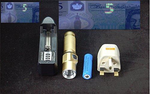 UV Fackel 365NM + Ladegerät zum Aushärten von Loca Kleber, Fliegenbinden Harz, Überprüfen von Geld A3