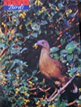 Texas Birds Magazine Spring-Summer 2000 Issued By Texas Ornithological Society (TOS) (Volume I Number 1)