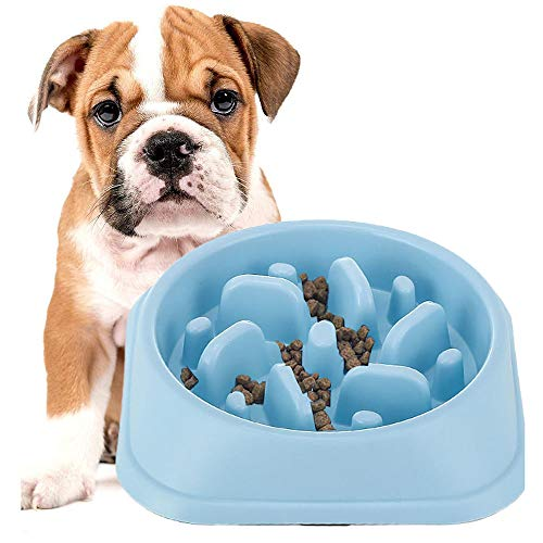 DotPet Slow Feeder Bowl, Fun Interactive Feeder Bloat Stop Dog Bowl Preventing Feeder Anti GulpingDrink Water Bowl Fan Shape Healthy Eating Diet for Puppy Dog Pet (Blue)