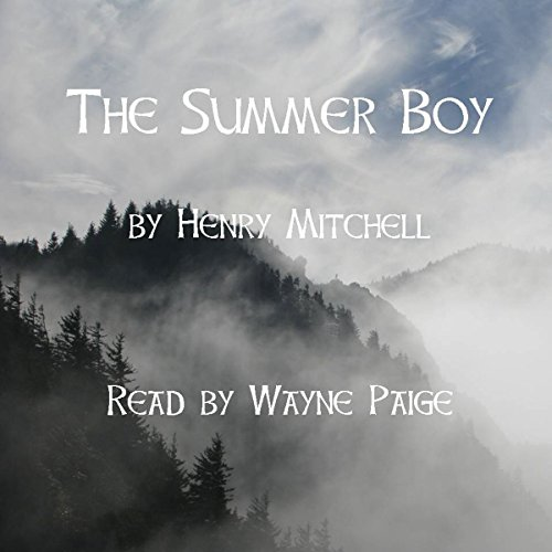 The Summer Boy audiobook cover art