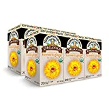Newman's Own Organics Turmeric Ginger Herbal Tea, 20 Individually Wrapped Tea Bags (Pack of 6)