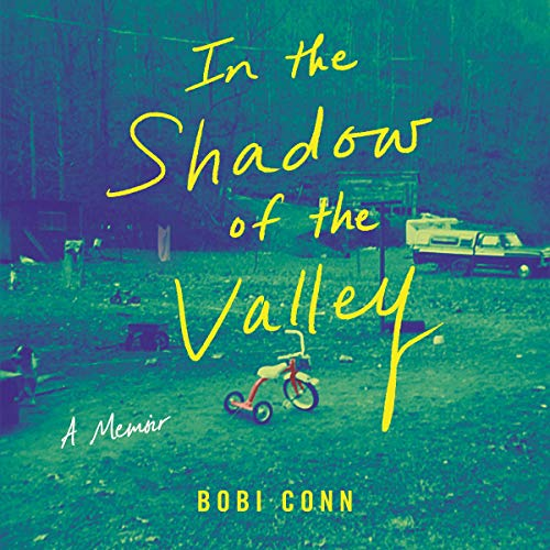 In the Shadow of the Valley Audiobook By Bobi Conn cover art