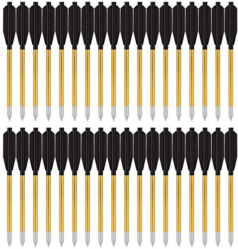PMSM Armbrustpfeile aus Aluminium für Pistolenarmbrust 6,3 Zoll Armbrustbolzen (36 Stück)