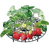 Modenny 5/10/20 PCS Erdbeere Ständer Rahmenhalter Balkon Pflanzen von Obst Unterstützung Pflanze...