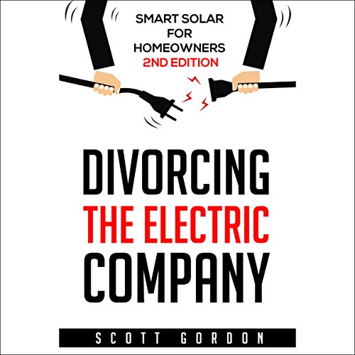 Divorcing the Electric Company audiobook cover art