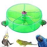 LLMZ Rueda de Alimentación para Loros 1Pieza Juguete de Masticación de Forrajeo Pájaro Creativo Forrajeo Juguete (Verde)