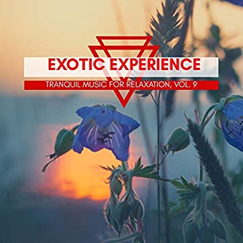 Exotic Experience - Tranquil Music For Relaxation, Vol. 9