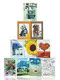 Generico 10 Album Portafoto 13x19 per ospitare 400 Foto 13x19. Copertina in cartoncino con Illustrazioni Diverse e Miste. Ogni Album ha 20 Tasche per Contenere 40 Stampe.