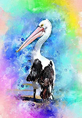 YZ-YUAN Diamond Painting Kits for Adults, 5D DIY Full Drill Rhinestone Embroidery Cross Stitch Kits for Home Wall Decoration Gift, Long-Billed Goose(30x40cm) for Gift