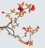 Origami Bonsai: Create Beautiful Botanical Sculptures from Paper: Create Beautiful Botanical Sculptures From Paper: Origami Book with 14 Beautiful Projects and Instructional DVD Video (Book & DVD)