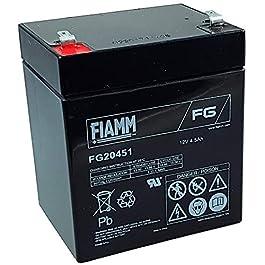 Fiamm – Batterie plomb AGM FG20451 12V 4.5Ah – Batterie(s)
