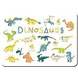 LINARUBE Antideslizante Alfombra De Baño,Gran Vector Set Diferentes Dinosaurios Planos,Alfombra de Cocina Alfombra Mascota,Alfombras de Ducha 80x60cm
