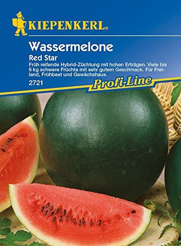 Kiepenkerl 2721 Wassermelone Red Star F1 (Wassermelonensamen)