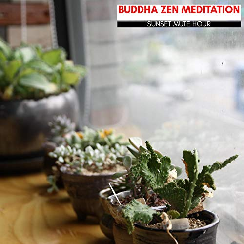 Buddha Zen Meditation - Sunset Mute Hour