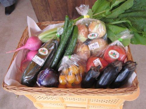 福島県産コシヒカリ2kg(精米) + 産直野菜セット