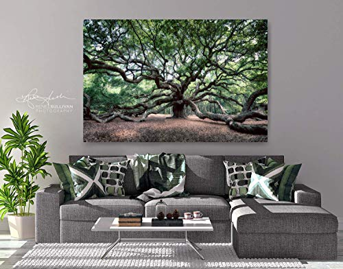 Angel Oak Tree/Charleston SC/CANVAS or METAL/Ready-to-Hang Fine Art Photo/Color Nature Photography/Small to Extra Large Wall Decor/ 7
