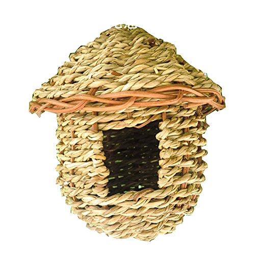 BLANCHO BEDDING Nid d'oiseau tissé à la Main en Paille Naturelle Suspendu au nid d'éclosion