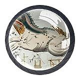 Tirador de cajón redondo de cristal para gabinete con tornillos para el hogar y la oficina (4 piezas) Sidney Hall (1)