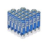Fuji EnviroMAX Disposable Household Batteries