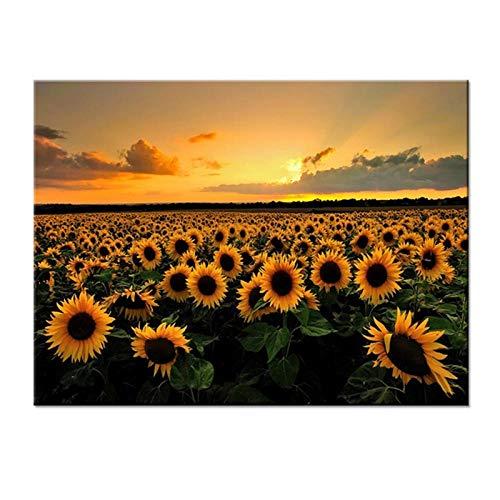 WADPJ Gemälde auf Leinwand Drucke Bild Sonnenblumen auf einem Feld Poster Dekoration Wohnzimmer Kunst Wand 60 x 80 cm x 1 Stück ohne Rahmen