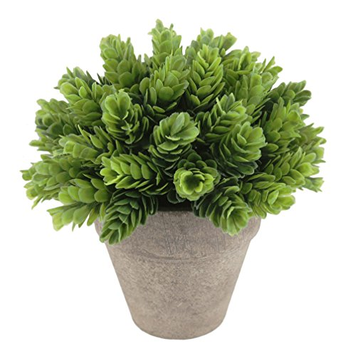 Kumii Small Artificial Plastic Potted Plant, Home Decor Grass for Desk Office Living Room Bedroom (Natural Green)