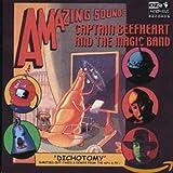 Songtexte von Captain Beefheart & His Magic Band - Dichotomy