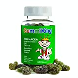 Gummi King Echinacea Plus Vitamin-C Zinc Supplement, Strawberry/Lemon/Orange/Grape/Cherry/Grapefruit, 60 Count
