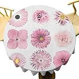 VICWOWONE - Mantel redondo de 150 cm, diseño de margarita botánica y crisstanthemum aciano Dahlia iberis Primrose Gerbera Set adecuado para uso en interiores y exteriores