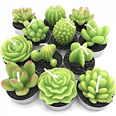 Succulent Cactus Candles Decor in Tealight holders 12 Unique Designs