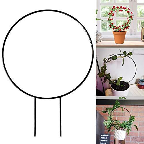 æ— 3 enrejados para plantas en maceta, enrejado de forma redonda para plantas trepadoras en macetas, soporte de metal de alambre para plantas trepadoras de vid.